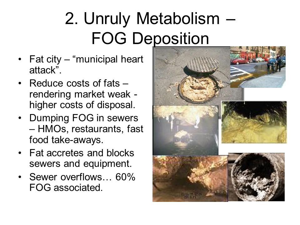 2. Unruly Metabolism – FOG Deposition Fat city – municipal heart attack .