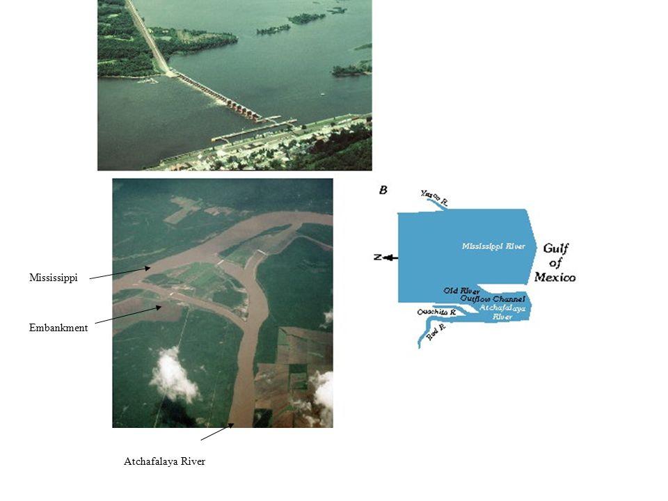 Atchafalaya Atchafalaya River Embankment Mississippi
