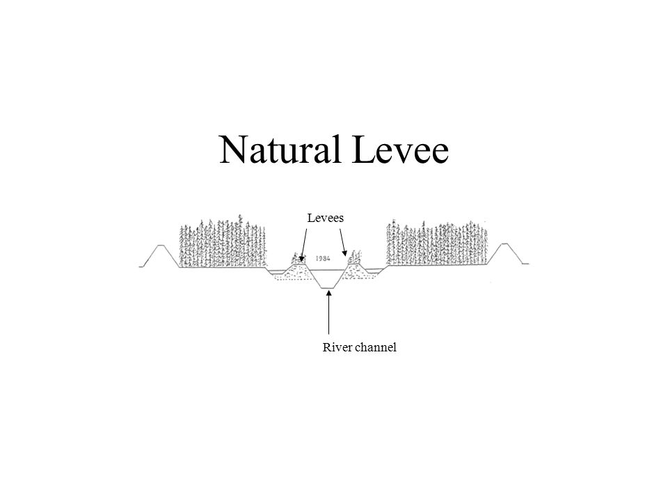 Natural Levee River channel Levees