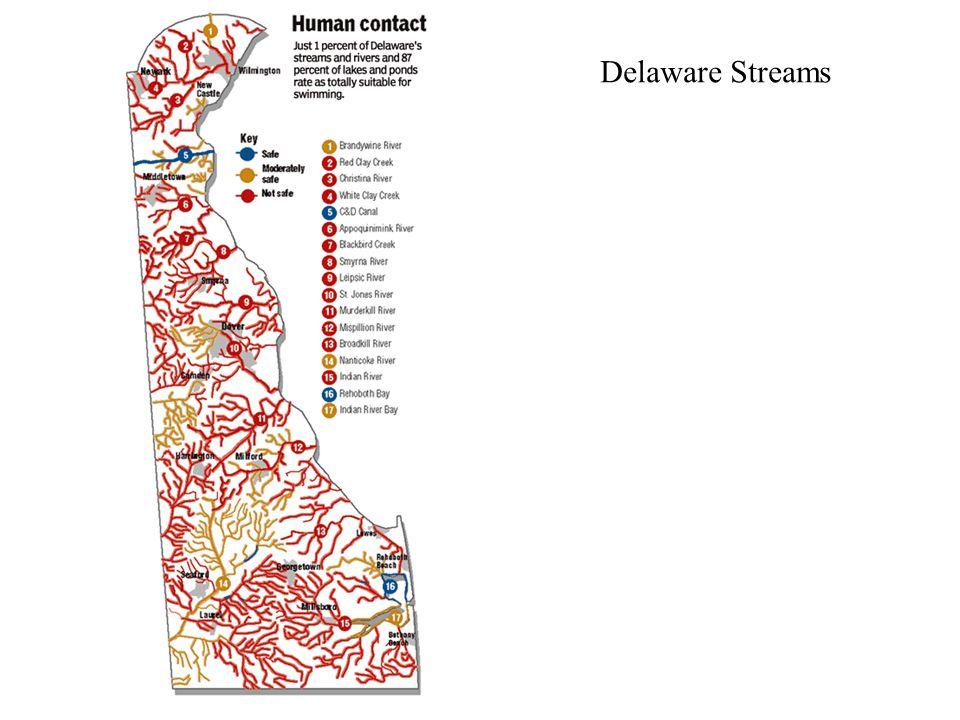 Delaware Streams
