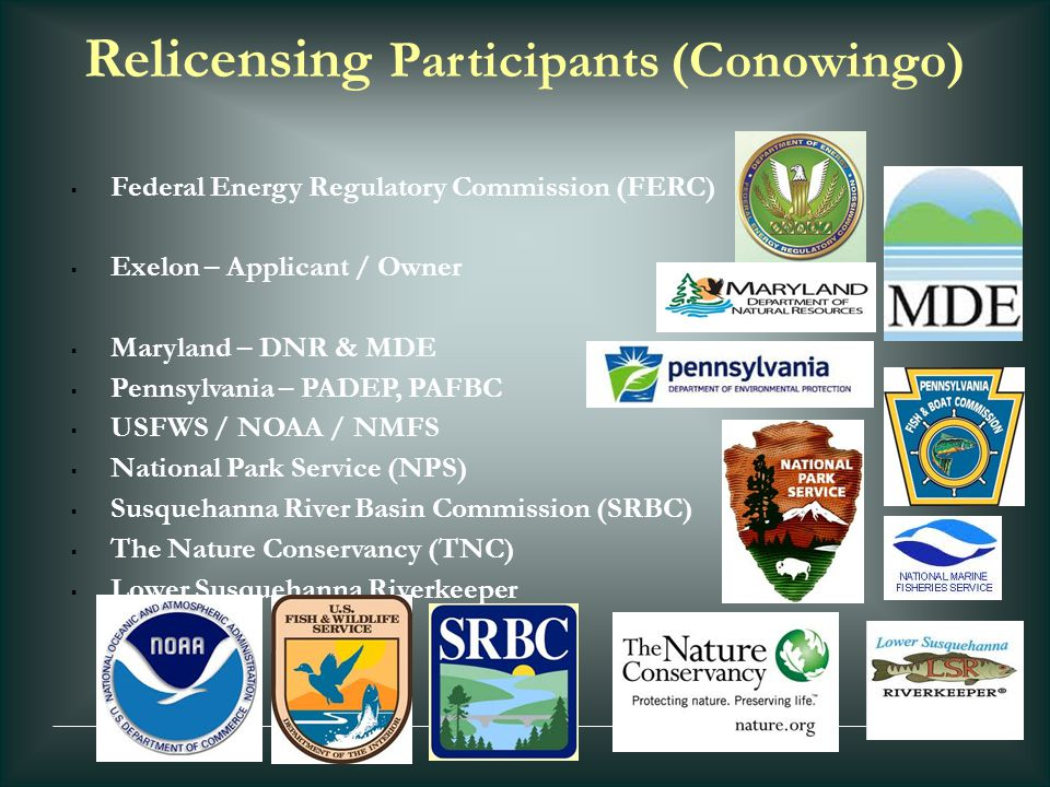Relicensing Participants (Conowingo)  Federal Energy Regulatory Commission (FERC)  Exelon – Applicant / Owner  Maryland – DNR & MDE  Pennsylvania