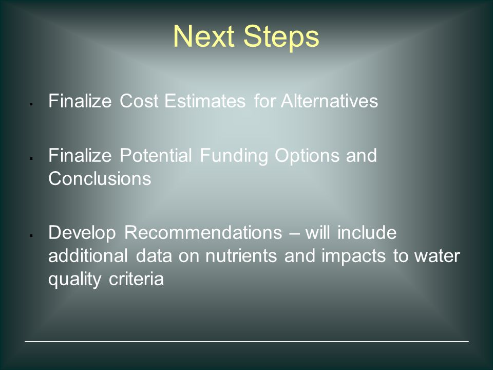 Next Steps  Finalize Cost Estimates for Alternatives  Finalize Potential Funding Options and Conclusions  Develop Recommendations – will include ad