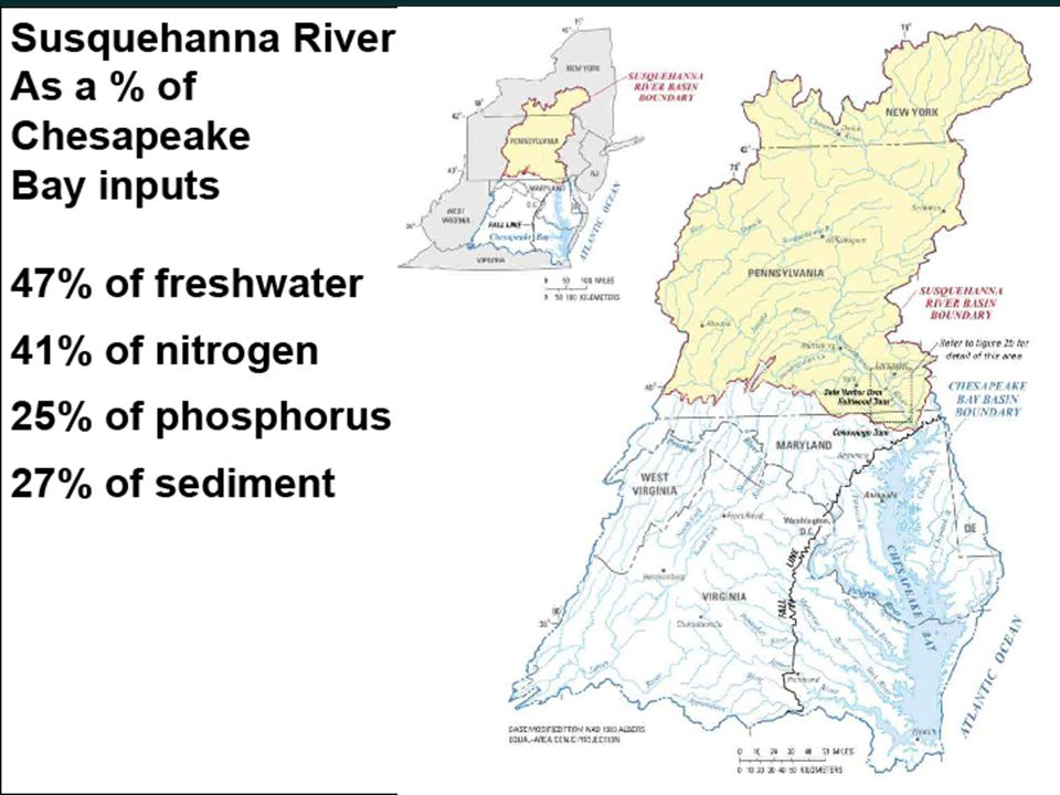 Implications if We Do Not Mitigate for Sediment Behind the Dam  If full implementation of the WIPs by 2025 ► Will not meet Dissolved Oxygen criteria in 3 Chesapeake Bay segments – CB4; Chester River mesohaline; and Eastern Bay ► There are some negative short-term water quality impacts to tributaries down to the Potomac River ► No water quality criteria impact to tributaries except the Chester River and Eastern Bay