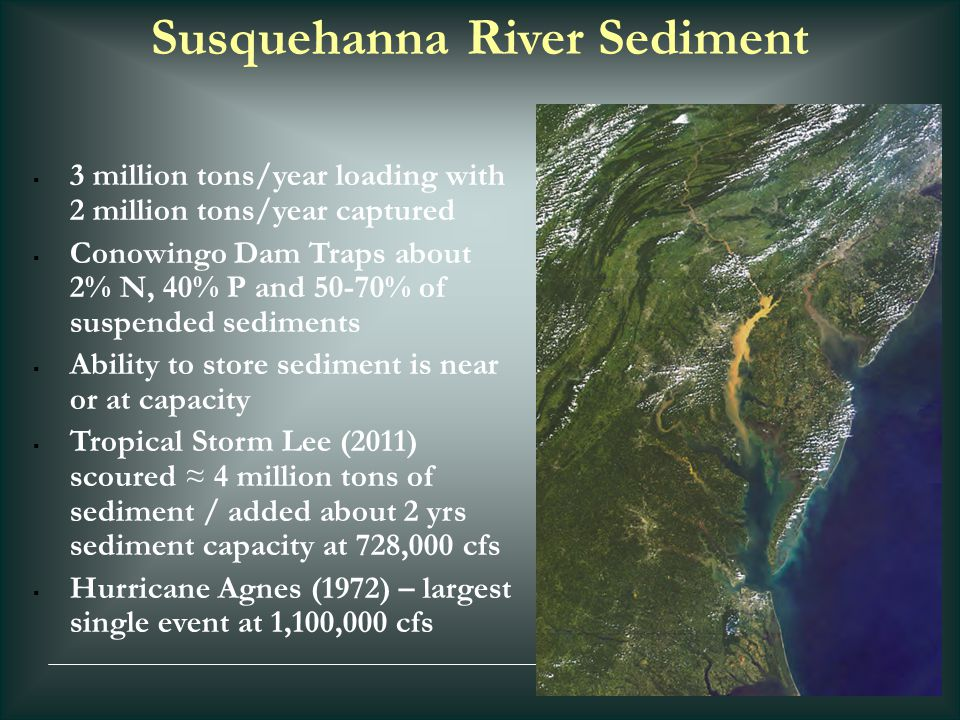 Susquehanna River Sediment  3 million tons/year loading with 2 million tons/year captured  Conowingo Dam Traps about 2% N, 40% P and 50-70% of suspe
