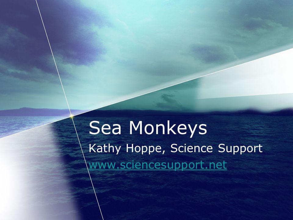 Sea Monkeys Kathy Hoppe, Science Support www.sciencesupport.net