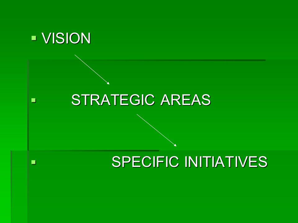 VVVVISION  S TRATEGIC AREAS PECIFIC INITIATIVES