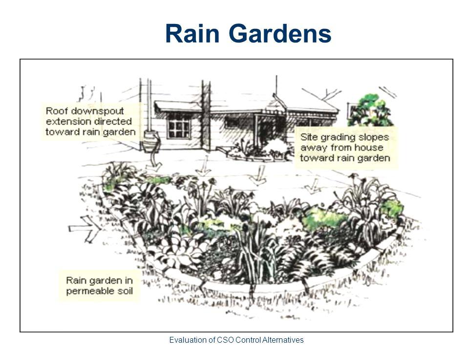 Rain Gardens Evaluation of CSO Control Alternatives