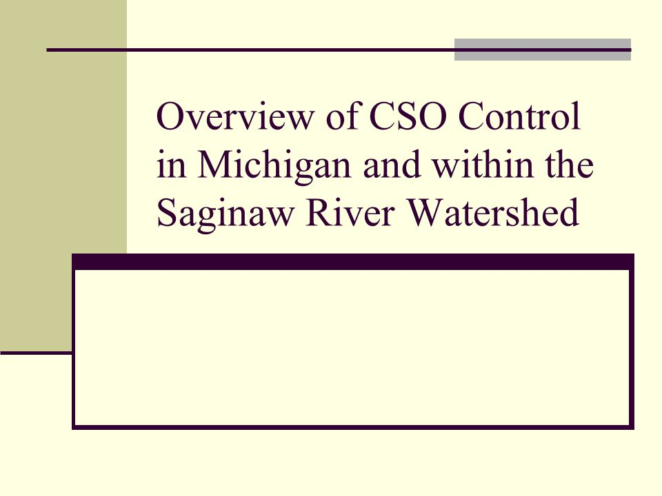 CSO Control - History 1990Michigan s State-Wide CSO Permitting Strategy Based on the Department's 1989 CSO Policy, the Water Resources Commission approved Michigan s State-Wide CSO Permitting Strategy on January 15, 1990, which was based upon the Department's CSO Policy and the approach followed in the Grand Rapids permit and Rouge River RAP.
