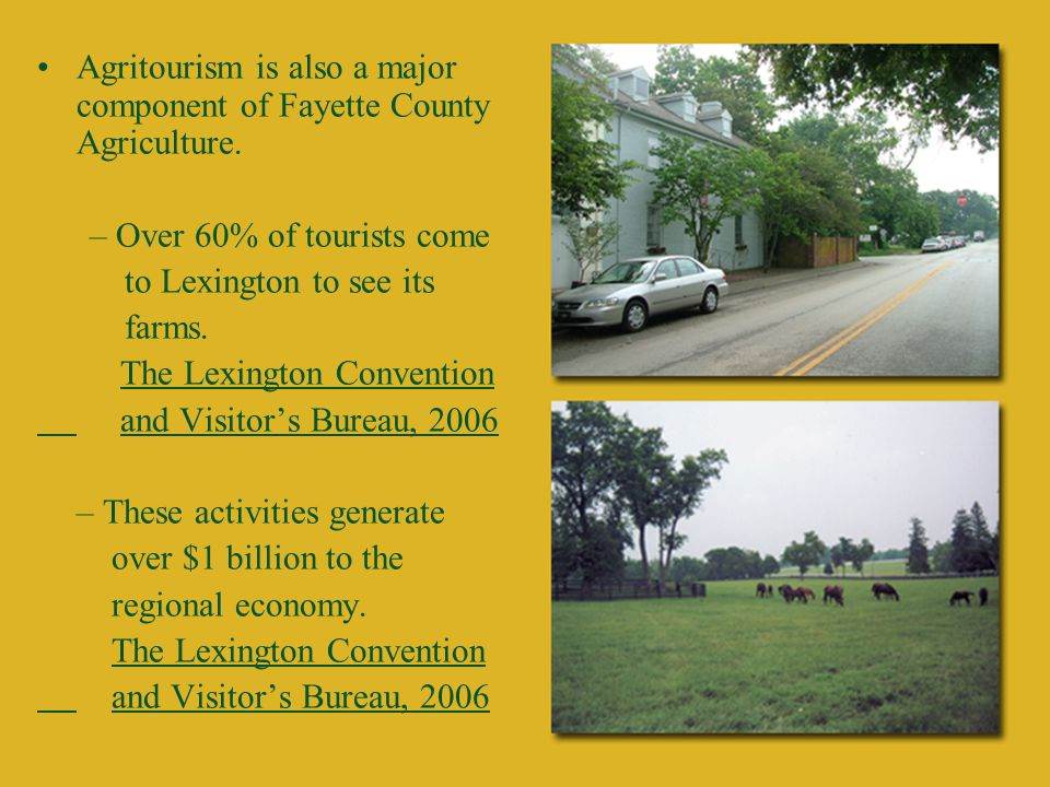 Agritourism is also a major component of Fayette County Agriculture.