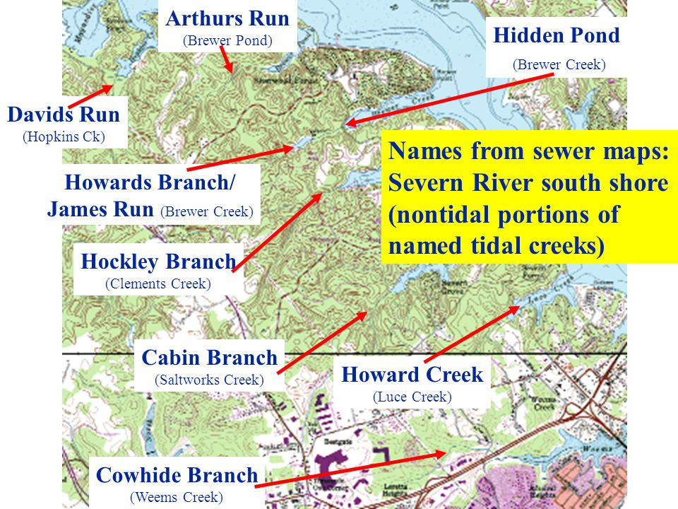 Davids Run (Hopkins Ck) Arthurs Run (Brewer Pond) Howards Branch/ James Run (Brewer Creek) Hockley Branch (Clements Creek) Cabin Branch (Saltworks Cre