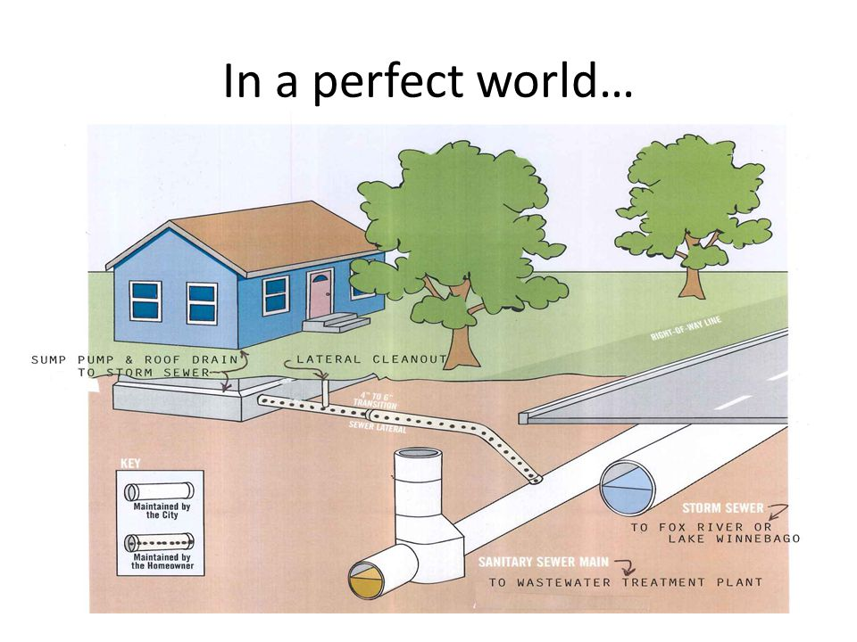 In a perfect world…