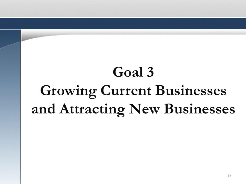 18 Goal 3 Growing Current Businesses and Attracting New Businesses