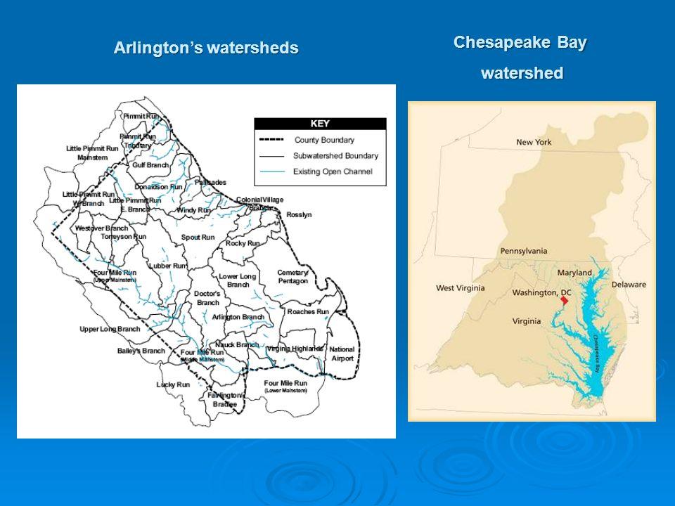 Arlington's watersheds Chesapeake Bay watershed