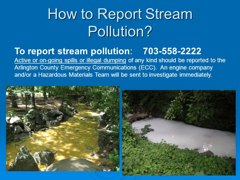 How to Report Stream Pollution.