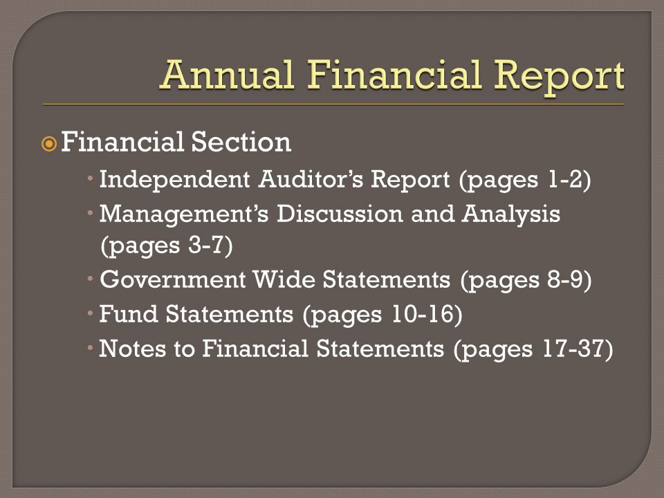  Financial Section  Independent Auditor's Report (pages 1-2)  Management's Discussion and Analysis (pages 3-7)  Government Wide Statements (pages