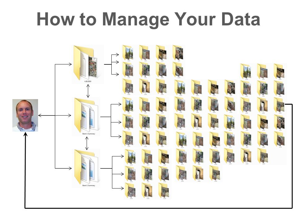 How to Manage Your Data