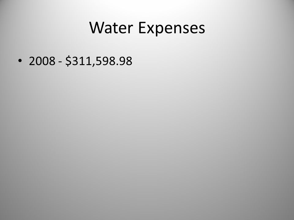 Water Expenses 2008 - $311,598.98