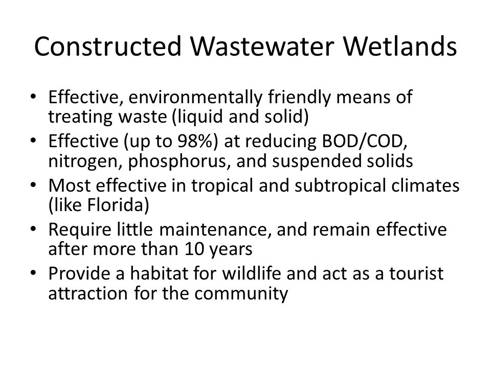 Constructed Wastewater Wetlands Effective, environmentally friendly means of treating waste (liquid and solid) Effective (up to 98%) at reducing BOD/COD, nitrogen, phosphorus, and suspended solids Most effective in tropical and subtropical climates (like Florida) Require little maintenance, and remain effective after more than 10 years Provide a habitat for wildlife and act as a tourist attraction for the community