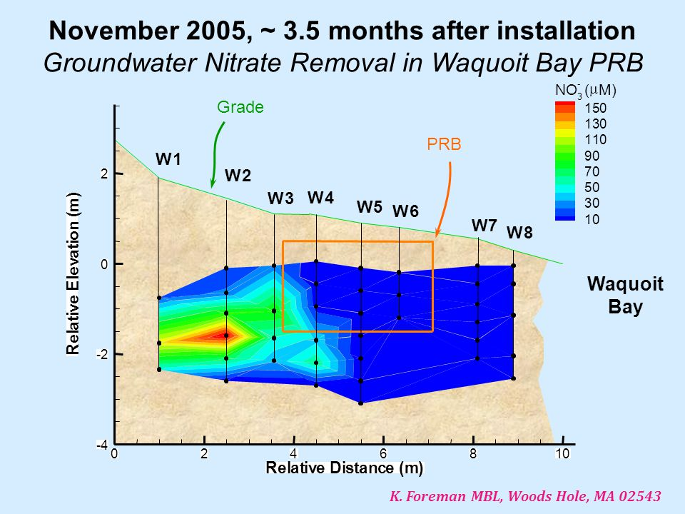 November 2005, ~ 3.5 months after installation Groundwater Nitrate Removal in Waquoit Bay PRB W1 W2 W3 W4 W5 W6 W7 W8 RelativeDistance(m) R e l a t i v e E l e v a t i o n ( m ) 0246810 -4 -2 0 2 NO 3 - (  M) 150 130 110 90 70 50 30 10 PRB Grade Waquoit Bay K.