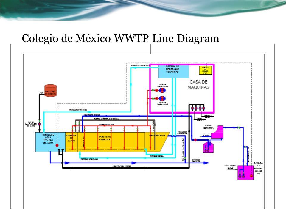 Colegio de México WWTP Line Diagram