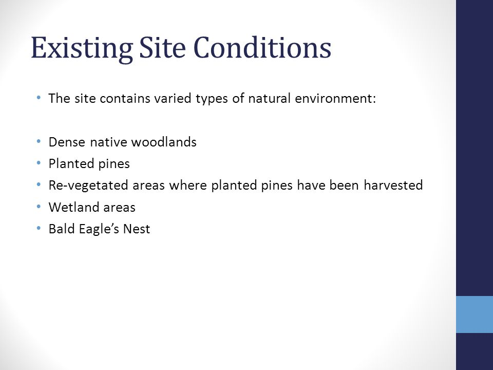 Existing Site Conditions The site contains varied types of natural environment: Dense native woodlands Planted pines Re-vegetated areas where planted