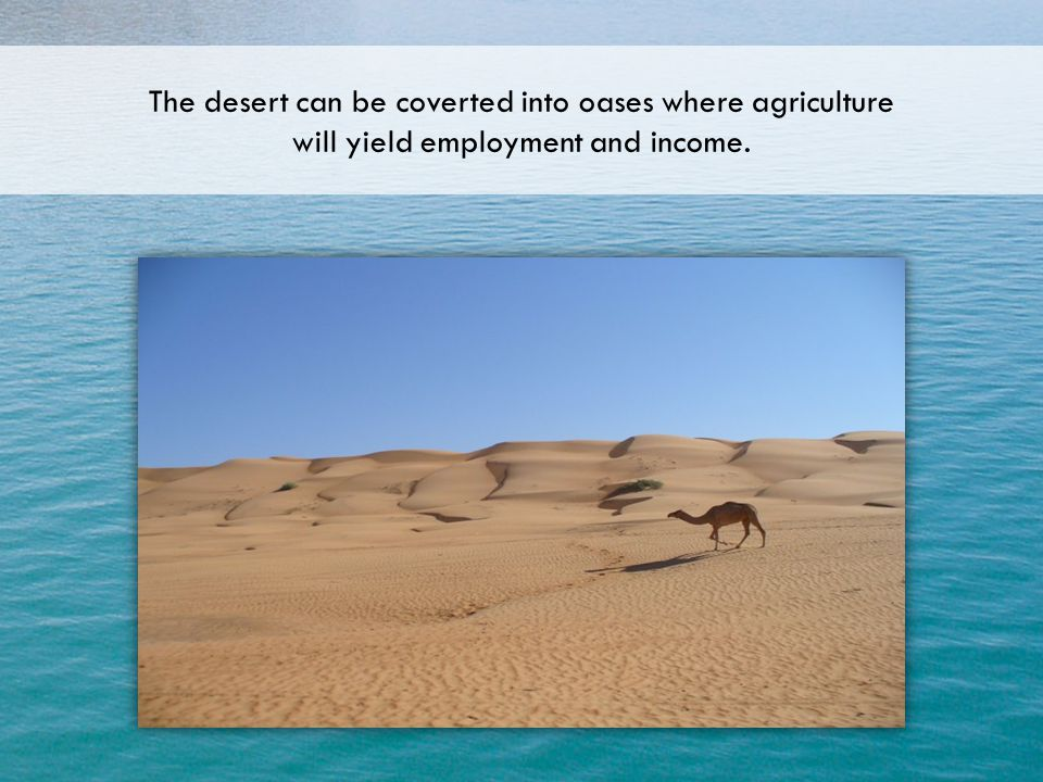 The desert can be coverted into oases where agriculture will yield employment and income.