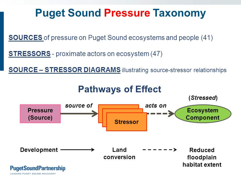 Puget Sound Pressure Taxonomy SOURCES of pressure on Puget Sound ecosystems and people (41) STRESSORS - proximate actors on ecosystem (47) SOURCE – STRESSOR DIAGRAMS illustrating source-stressor relationships Pathways of Effect Pressure (Source) Stressor Ecosystem Component (Stressed) source of acts on DevelopmentLand conversion Reduced floodplain habitat extent Stressor