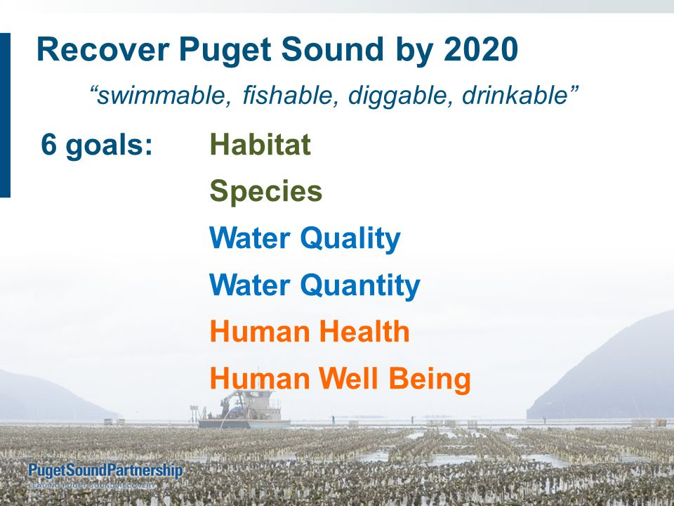 6 goals:Habitat Species Water Quality Water Quantity Human Health Human Well Being swimmable, fishable, diggable, drinkable Recover Puget Sound by 2020