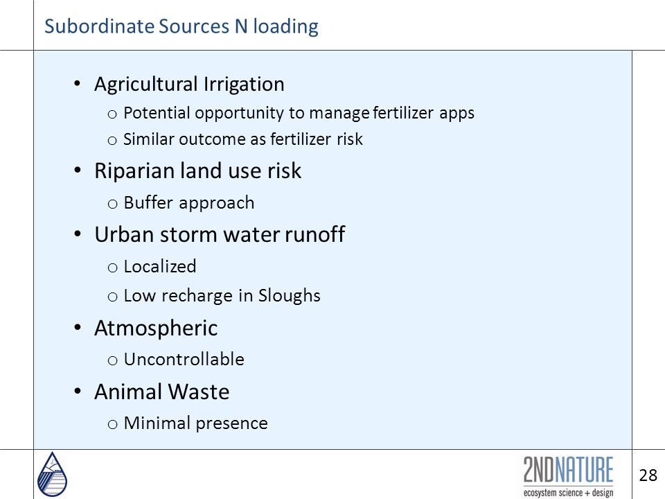 Agricultural Irrigation o Potential opportunity to manage fertilizer apps o Similar outcome as fertilizer risk Riparian land use risk o Buffer approach Urban storm water runoff o Localized o Low recharge in Sloughs Atmospheric o Uncontrollable Animal Waste o Minimal presence 28 Subordinate Sources N loading