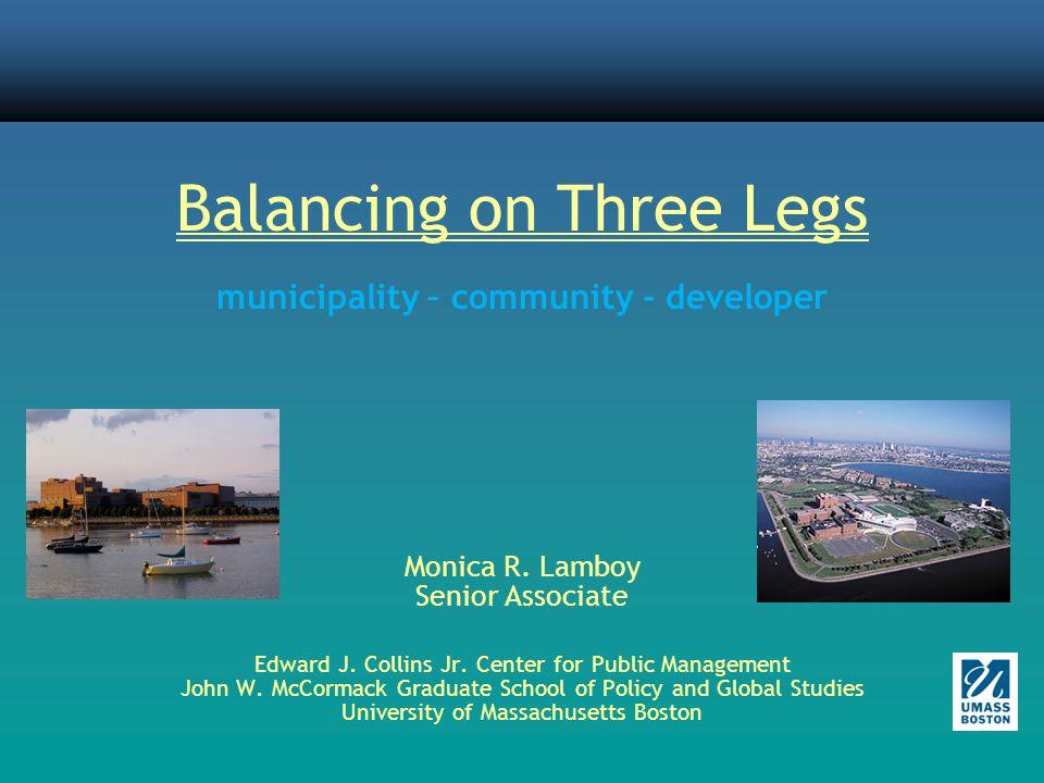 Balancing on Three Legs municipality – community - developer Monica R.