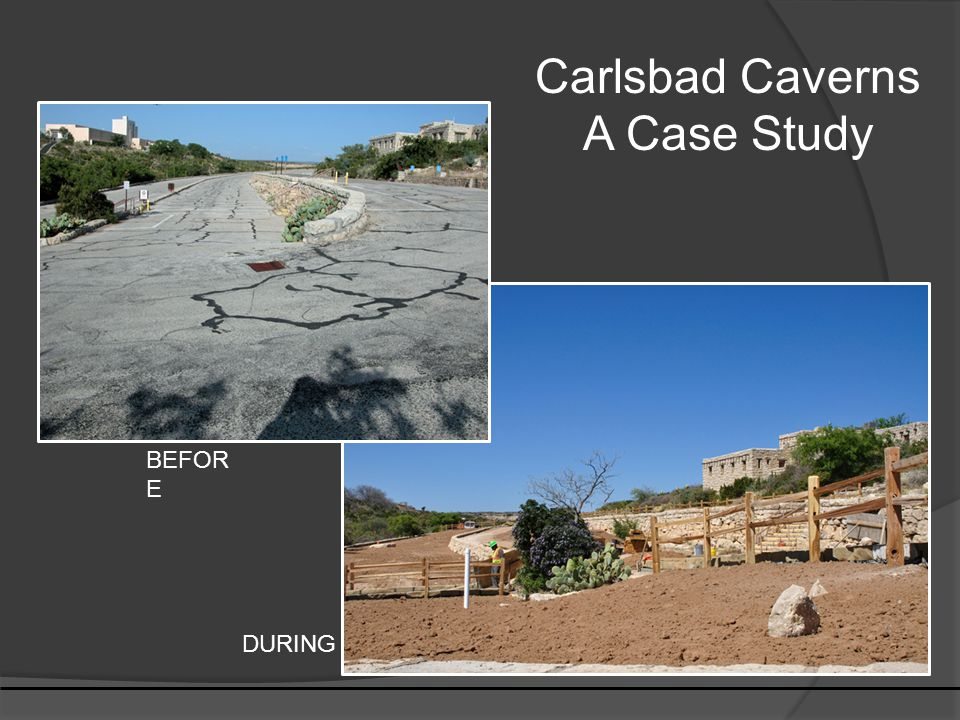 Carlsbad Caverns A Case Study BEFOR E DURING