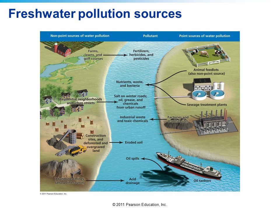 © 2011 Pearson Education, Inc. Freshwater pollution sources