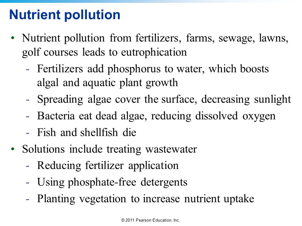 © 2011 Pearson Education, Inc. Nutrient pollution Nutrient pollution from fertilizers, farms, sewage, lawns, golf courses leads to eutrophication -Fer