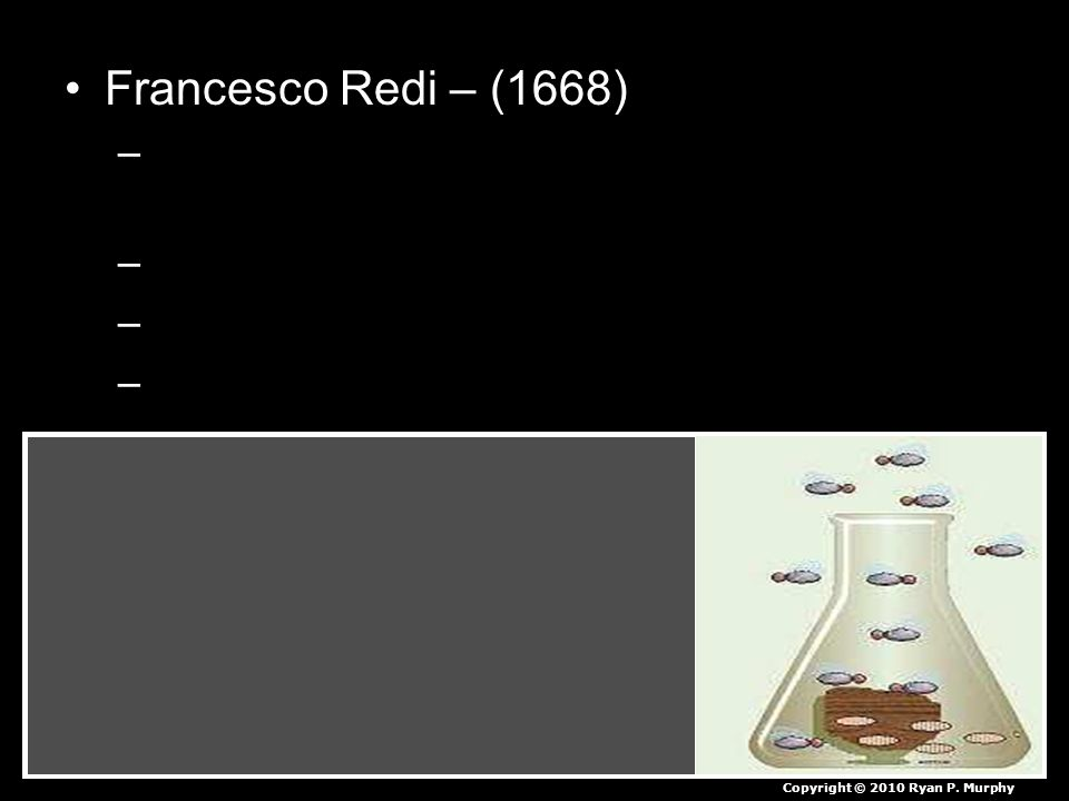 Francesco Redi – (1668) –People believed flies spontaneously came from meat. –Redi covered one flask, left one open to air –Observed flies laying eggs
