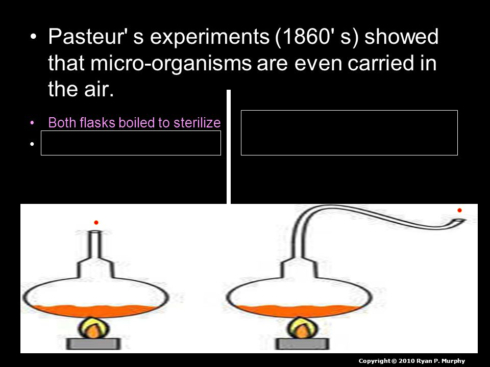Pasteur' s experiments (1860' s) showed that micro-organisms are even carried in the air. Both flasks boiled to sterilize Micro-organisms trapped in s
