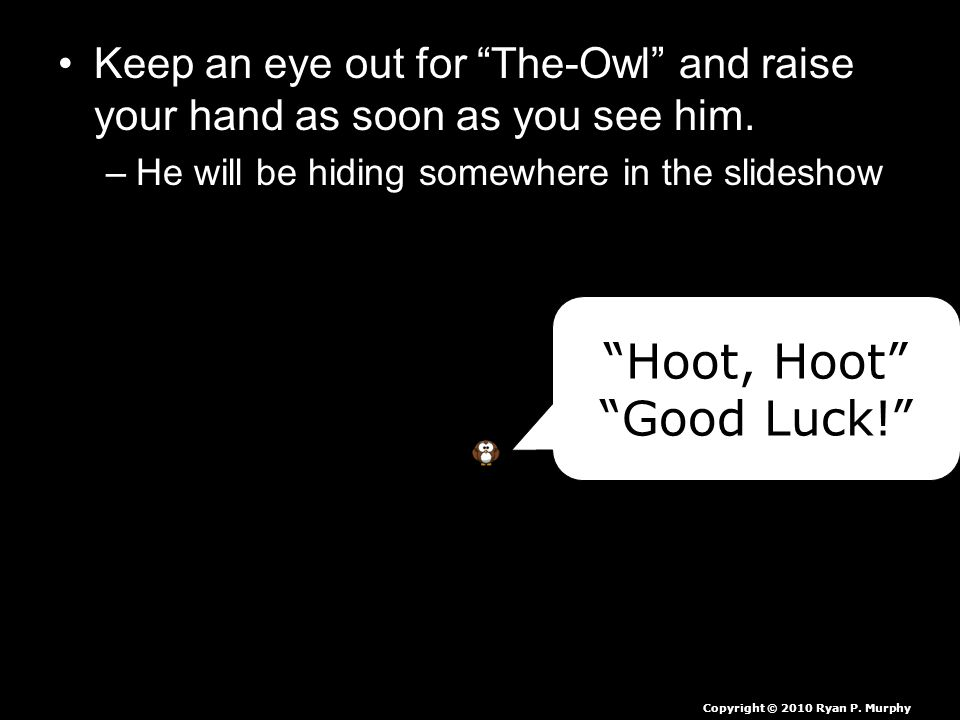 """Keep an eye out for """"The-Owl"""" and raise your hand as soon as you see him. –He will be hiding somewhere in the slideshow """"Hoot, Hoot"""" """"Good Luck!"""" Copy"""