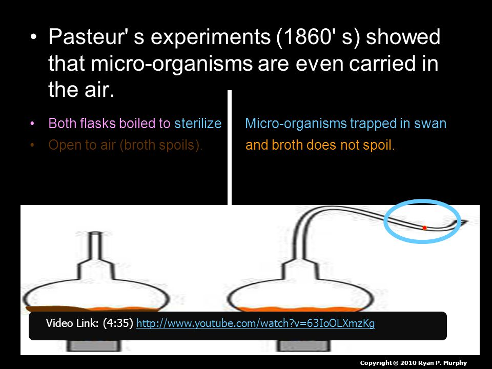 Pasteur s experiments (1860 s) showed that micro-organisms are even carried in the air.