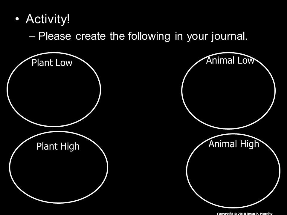Activity.–Please create the following in your journal.
