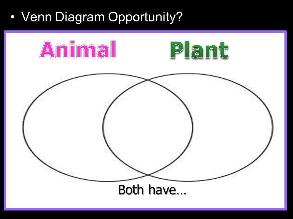 Venn Diagram Opportunity? Both have…