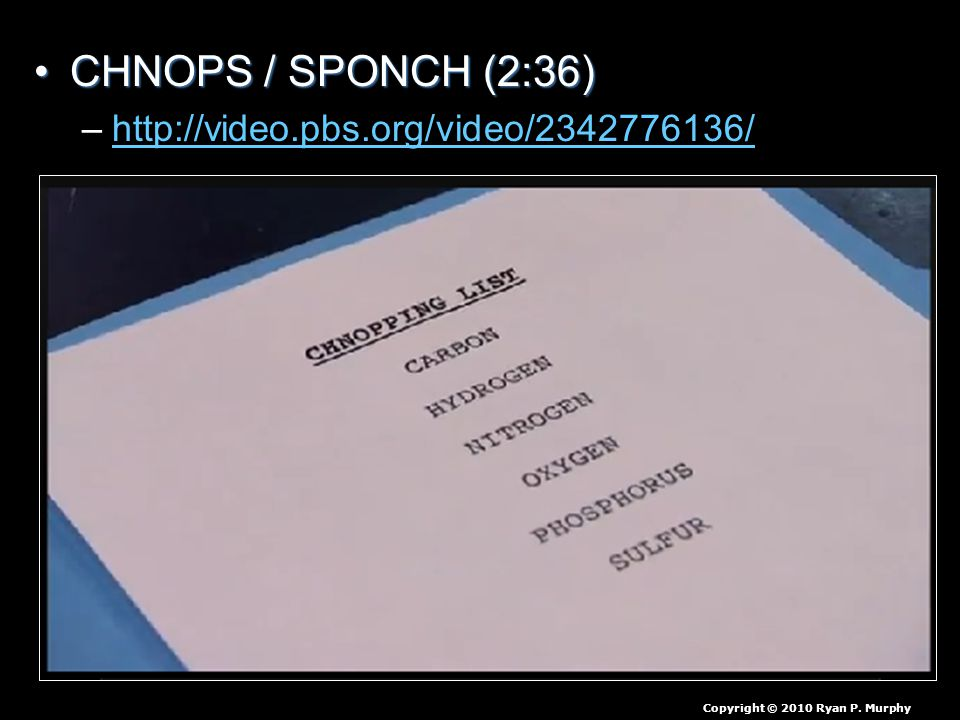 CHNOPS / SPONCH (2:36)CHNOPS / SPONCH (2:36) –http://video.pbs.org/video/2342776136/http://video.pbs.org/video/2342776136/ Copyright © 2010 Ryan P.