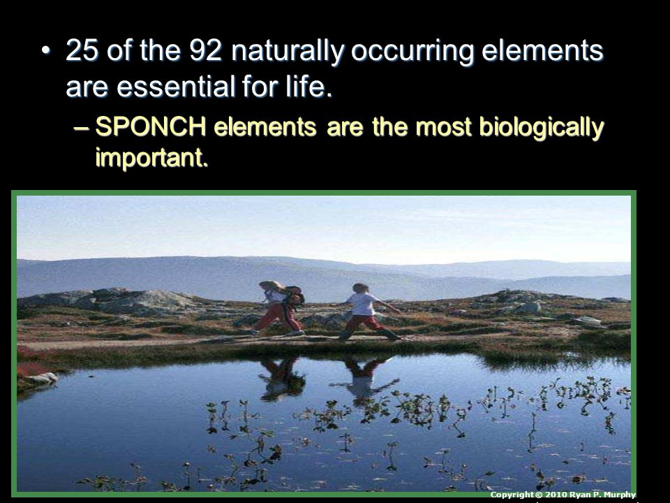 25 of the 92 naturally occurring elements are essential for life.25 of the 92 naturally occurring elements are essential for life. –SPONCH elements ar