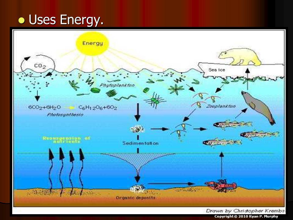 Uses Energy. Uses Energy. Copyright © 2010 Ryan P. Murphy