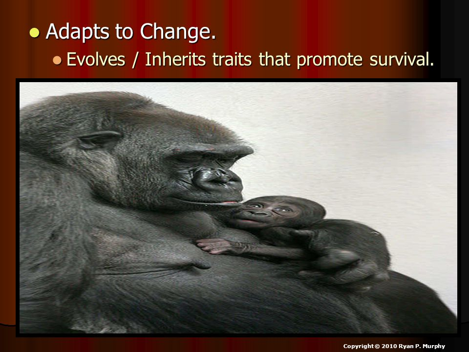Adapts to Change.Adapts to Change. Evolves / Inherits traits that promote survival.