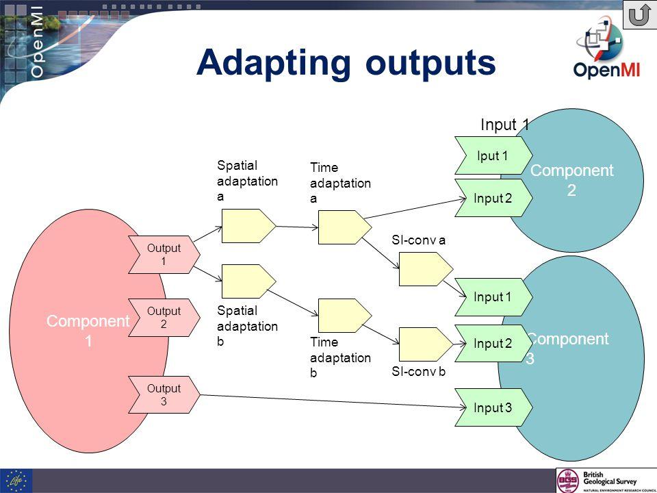 Adapting outputs Component 1 Component 3 Component 2 Iput 1 Input 2 Input 1 Input 2 Input 3 Output 3 Output 2 Output 1 Input 1 Spatial adaptation a Spatial adaptation b Time adaptation a Time adaptation b SI-conv b SI-conv a
