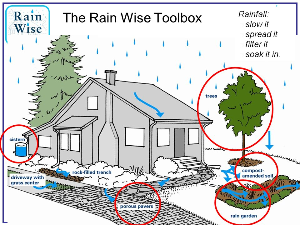 The Rain Wise Toolbox Rainfall: - slow it - spread it - filter it - soak it in.