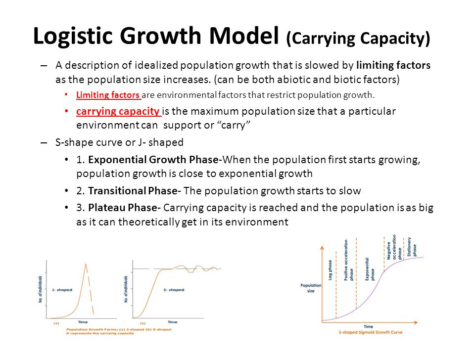 Logistic Growth Model (Carrying Capacity) – A description of idealized population growth that is slowed by limiting factors as the population size inc