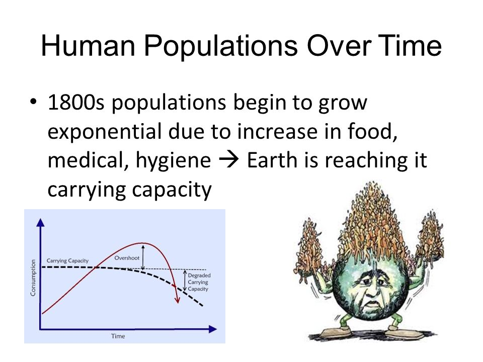 Human Populations Over Time 1800s populations begin to grow exponential due to increase in food, medical, hygiene  Earth is reaching it carrying capa