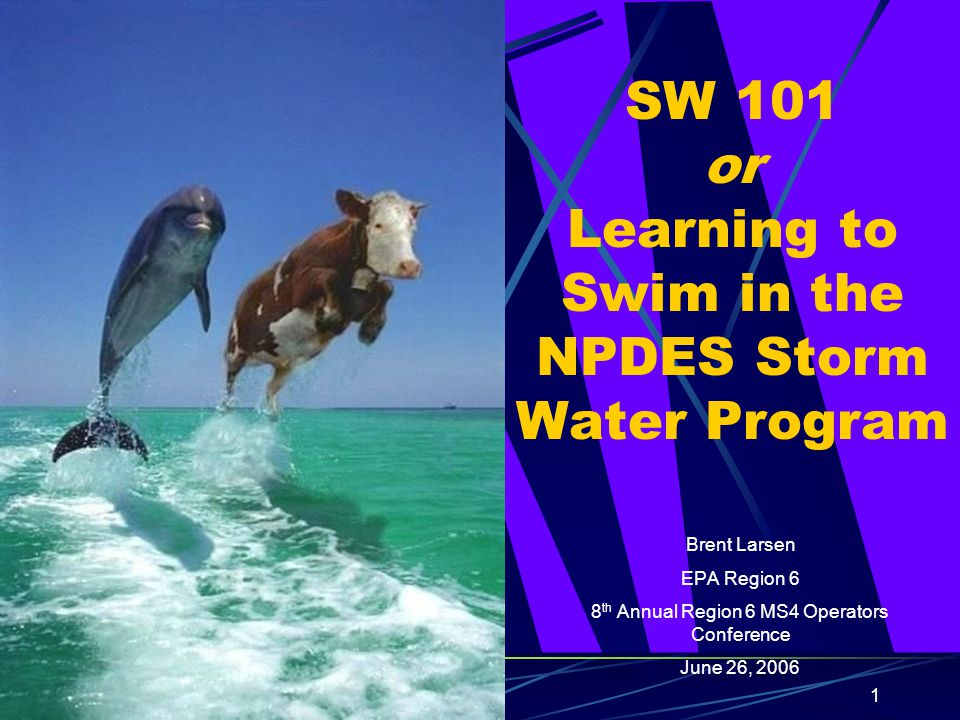 1 SW 101 or Learning to Swim in the NPDES Storm Water Program Brent Larsen EPA Region 6 8 th Annual Region 6 MS4 Operators Conference June 26, 2006