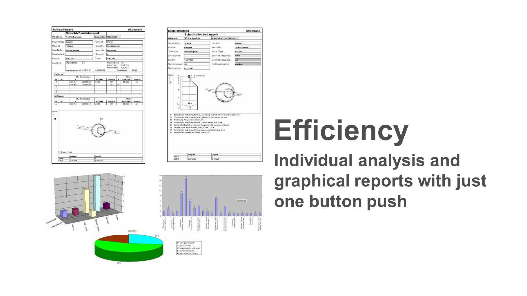 Efficiency Individual analysis and graphical reports with just one button push