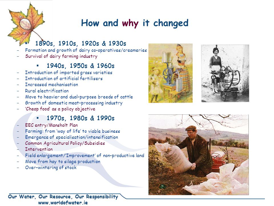 Our Water, Our Resource, Our Responsibility www.worldofwater.ie How and why it changed  1890s, 1910s, 1920s & 1930s - Formation and growth of dairy co-operatives/creameries - Survival of dairy farming industry  1940s, 1950s & 1960s - Introduction of imported grass varieties - Introduction of artificial fertilisers - Increased mechanisation - Rural electrification - Move to heavier and dual-purpose breeds of cattle - Growth of domestic meat-processing industry - 'Cheap food' as a policy objective  1970s, 1980s & 1990s - EEC entry/Mansholt Plan - Farming: from 'way of life' to viable business - Emergence of specialisation/intensification - Common Agricultural Policy/Subsidies - Intervention - Field enlargement/'Improvement' of non-productive land - Move from hay to silage production - Over-wintering of stock